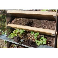 Pour planter, un peu de terreau sur la desserte, un outil et une plante. Le tour est joué.